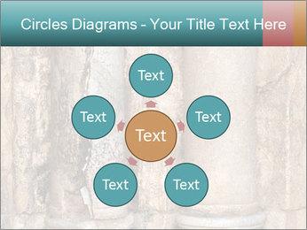 0000084282 PowerPoint Templates - Slide 78