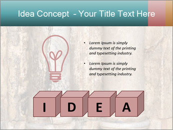 0000084282 PowerPoint Template - Slide 80