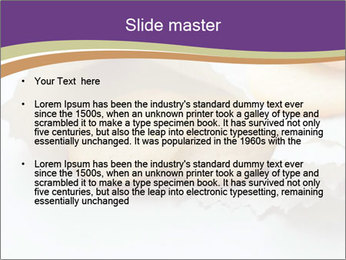0000084283 PowerPoint Template - Slide 2
