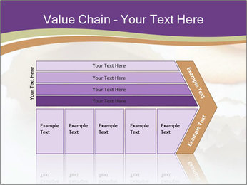 0000084283 PowerPoint Templates - Slide 27