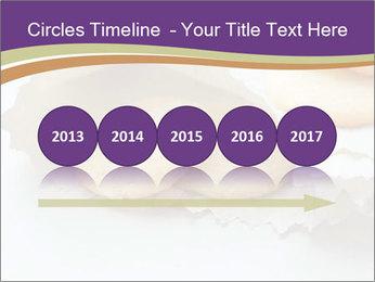 0000084283 PowerPoint Templates - Slide 29
