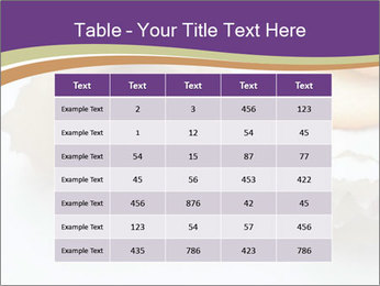 0000084283 PowerPoint Template - Slide 55