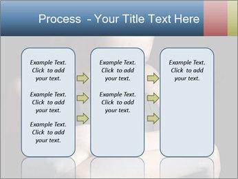 0000084309 PowerPoint Templates - Slide 86