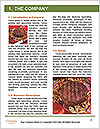 0000084321 Word Template - Page 3