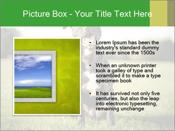 0000084323 PowerPoint Templates - Slide 13