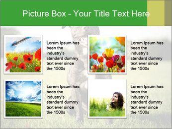 0000084323 PowerPoint Templates - Slide 14