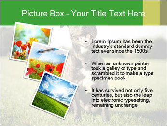 0000084323 PowerPoint Templates - Slide 17