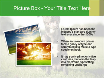 0000084323 PowerPoint Templates - Slide 20