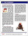 0000084327 Word Template - Page 3