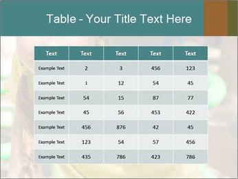 0000084331 PowerPoint Template - Slide 55