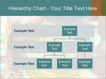 0000084331 PowerPoint Template - Slide 67