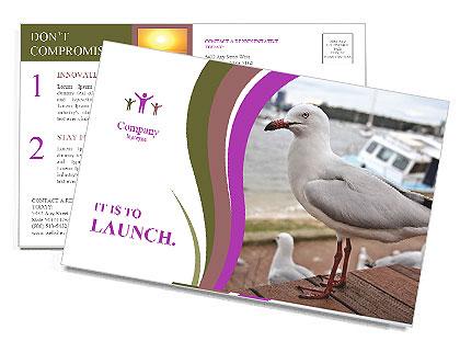 0000084338 Postcard Templates