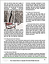 0000084340 Word Templates - Page 4