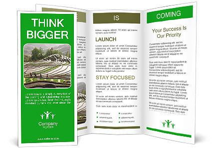 0000084344 Brochure Template