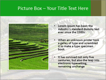 0000084344 PowerPoint Template - Slide 13