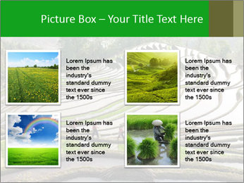0000084344 PowerPoint Template - Slide 14