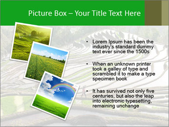 0000084344 PowerPoint Template - Slide 17