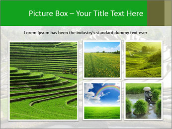 0000084344 PowerPoint Template - Slide 19