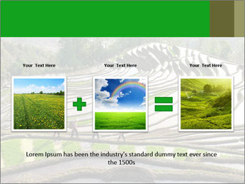 0000084344 PowerPoint Template - Slide 22