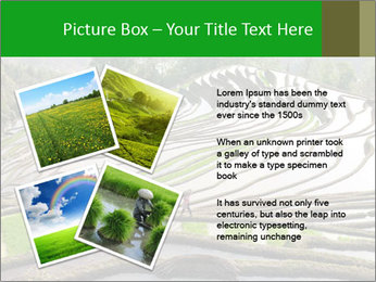 0000084344 PowerPoint Template - Slide 23