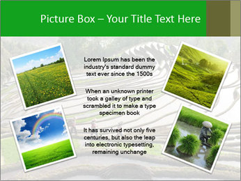0000084344 PowerPoint Template - Slide 24