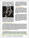 0000084346 Word Templates - Page 4