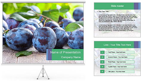 0000084348 PowerPoint Template