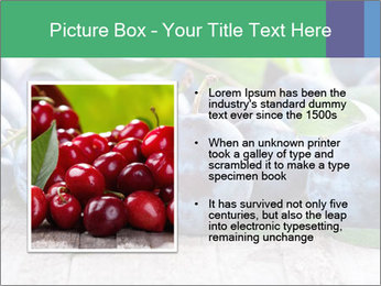 0000084348 PowerPoint Template - Slide 13