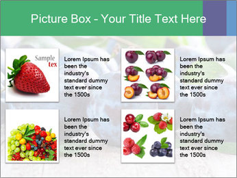 0000084348 PowerPoint Template - Slide 14