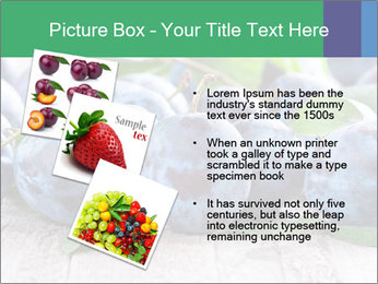 0000084348 PowerPoint Template - Slide 17