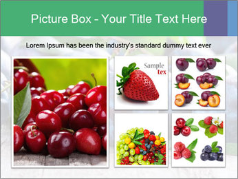 0000084348 PowerPoint Template - Slide 19