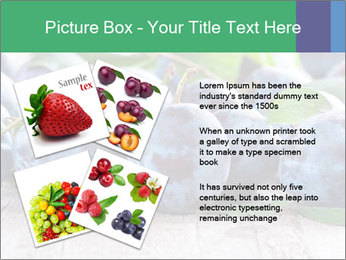 0000084348 PowerPoint Template - Slide 23