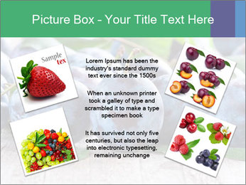 0000084348 PowerPoint Template - Slide 24