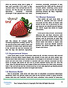 0000084348 Word Template - Page 4