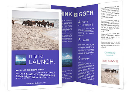 0000084351 Brochure Template