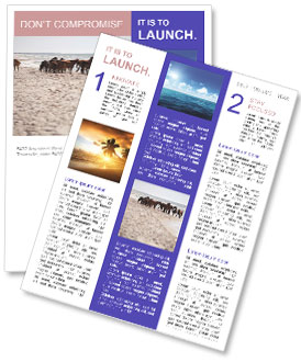 0000084351 Newsletter Templates