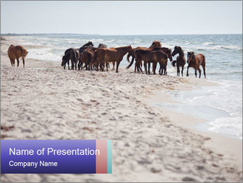 0000084351 PowerPoint Template
