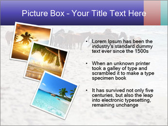 0000084351 PowerPoint Template - Slide 17