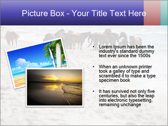 0000084351 PowerPoint Template - Slide 20