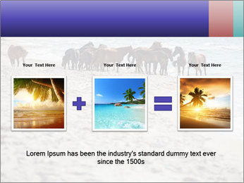 0000084351 PowerPoint Template - Slide 22