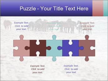 0000084351 PowerPoint Template - Slide 41