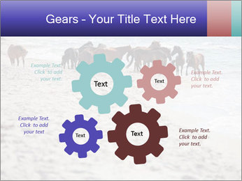 0000084351 PowerPoint Template - Slide 47