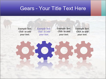 0000084351 PowerPoint Template - Slide 48