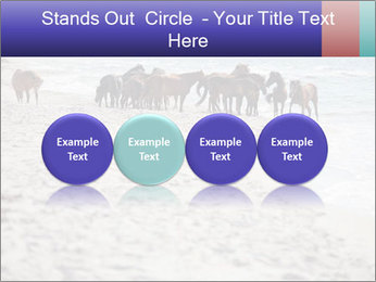 0000084351 PowerPoint Template - Slide 76
