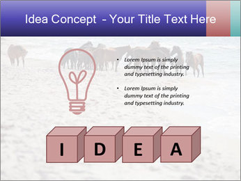 0000084351 PowerPoint Template - Slide 80