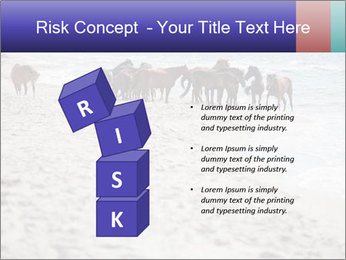 0000084351 PowerPoint Template - Slide 81