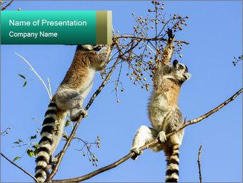 0000084352 PowerPoint Templates - Slide 1
