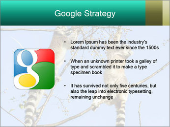 0000084352 PowerPoint Templates - Slide 10