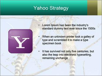 0000084352 PowerPoint Template - Slide 11
