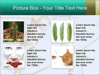 0000084352 PowerPoint Templates - Slide 14